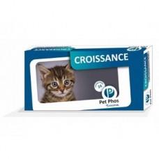 Pet Phos Feline Croissance 96 tb