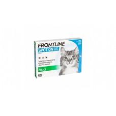 Frontline spot on pisici