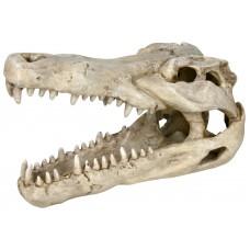 Decor Craniu Crocodil 14 cm 8712
