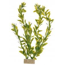 Plante cu Greutate 30 cm 8935