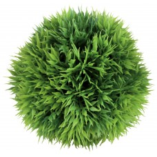 Plante Rotunde 9 cm 89361
