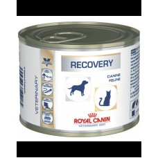 Royal canin Recovery Ultra Soft Cat/Dog Conserva 195g