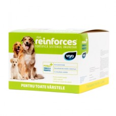 Viyo Reinforces for Dogs all ages 30 x 30 ml