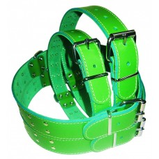 Pet expert zgarda capse 3,0x62cm verde nr.7