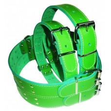 Pet expert zgarda capse 3,5x70cm verde nr.8
