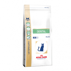 Royal canin Dental S/O Cat Dry 1.5kg