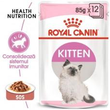 Royal Canin KITTEN INSTINCTIVE IN GRAVY 85 g
