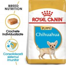 Royal Canin CHIHUAHUA PUPPY 1.5 kg