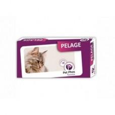 Pet Phos Feline Pelage 36 tb